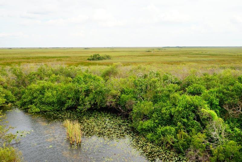 Paisaje del parque nacional de los marismas fotos de archivo libres de regalías