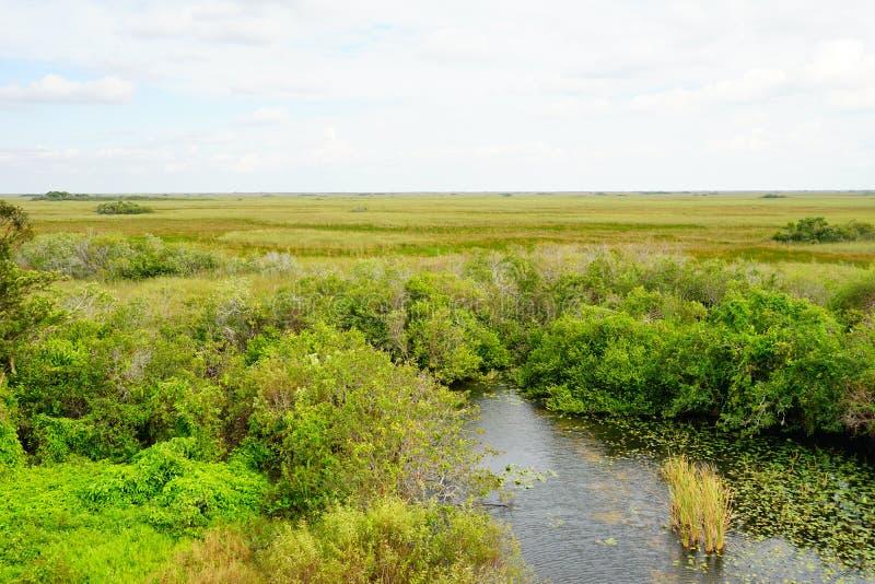 Paisaje del parque nacional de los marismas imagen de archivo