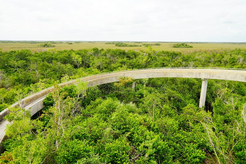 Paisaje del parque nacional de los marismas foto de archivo libre de regalías