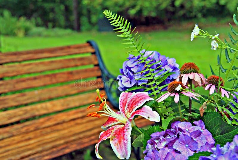 Paisaje del patio trasero fotografía de archivo