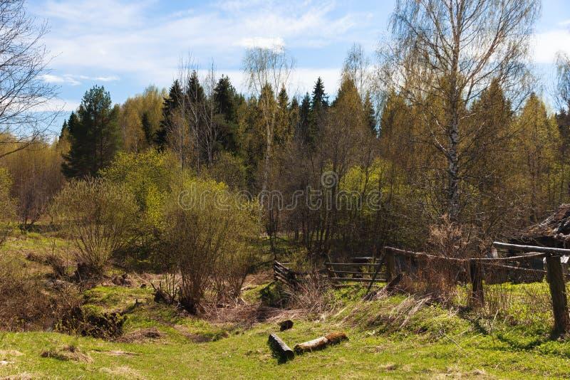 Paisaje del patio trasero del pueblo de la primavera Paisaje del campo de la primavera imágenes de archivo libres de regalías