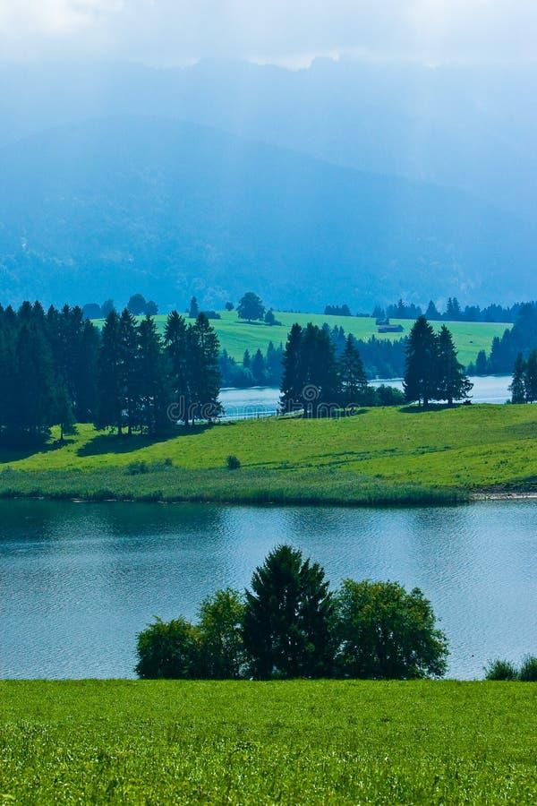 Paisaje del prado con los árboles y las montañas imagen de archivo libre de regalías