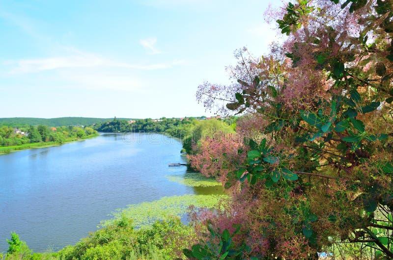 Paisaje del río de la colina imágenes de archivo libres de regalías
