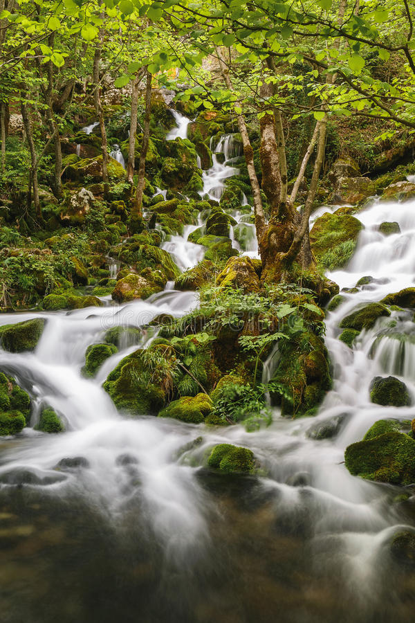 Paisaje del río de la montaña fotografía de archivo libre de regalías