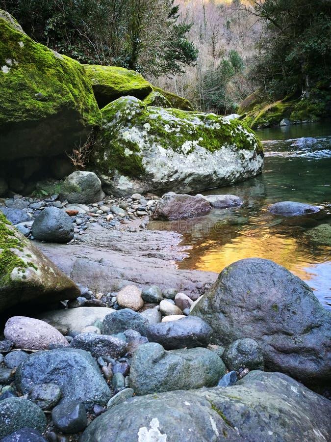 Paisaje del río de la montaña de la naturaleza en la primavera temprana Georgia foto de archivo