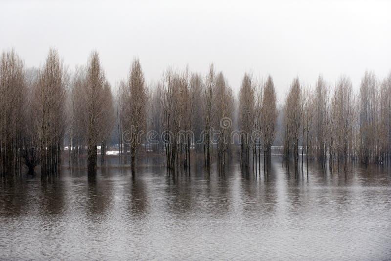 Paisaje del río después de la nieve foto de archivo libre de regalías