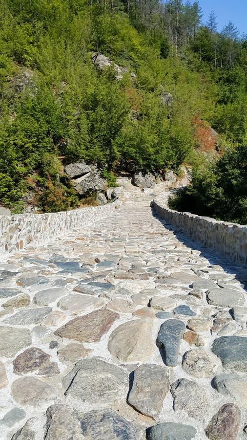 Paisaje del río del puente, de Arda del diablo medieval y de la montaña de Rhodopes, Bulgaria imágenes de archivo libres de regalías
