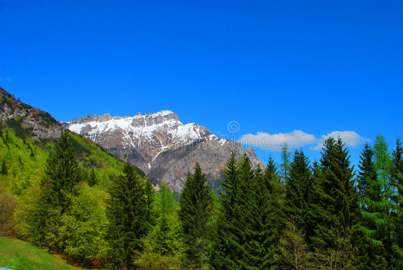 Paisaje del resorte de la montaña. foto de archivo