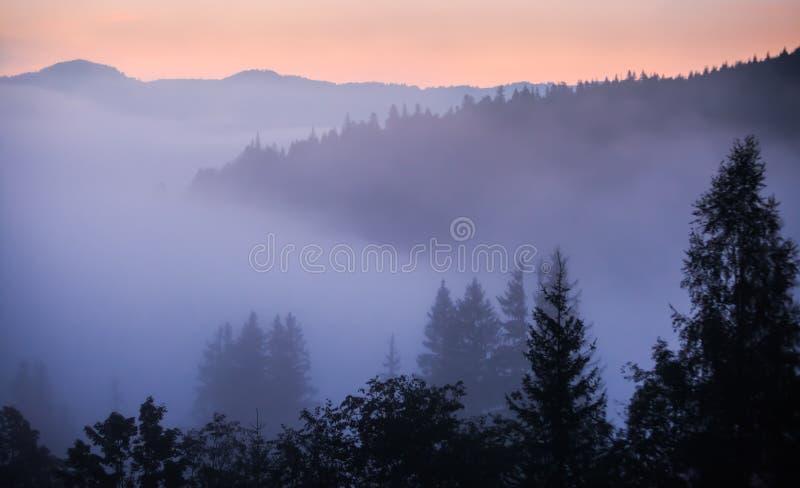 Download Paisaje Del Valle De La Montaña De La Niebla Y De La Nube, Imagen de archivo - Imagen de país, paisaje: 44852935