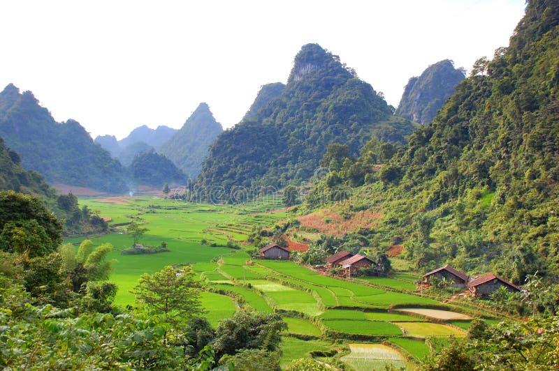 Paisaje del valle en Vietnam fotografía de archivo