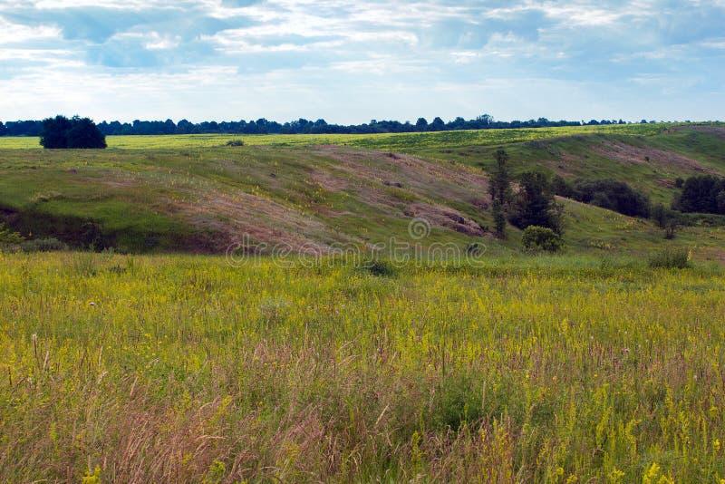 Paisaje del valle herboso, de colinas con los árboles y del cielo nublado imagenes de archivo