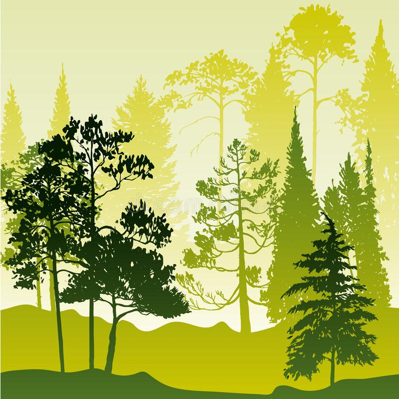 Paisaje del vector con los árboles de pino stock de ilustración