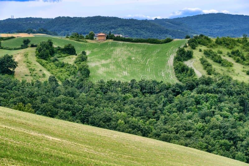 Paisaje del verano cerca de Serramazzoni Módena, Italia imagenes de archivo