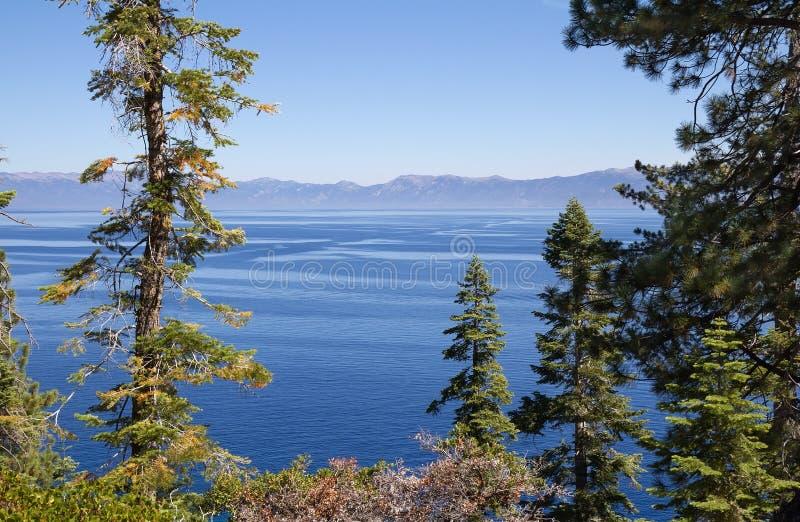 Paisaje del verano con el lago Tahoe azul foto de archivo