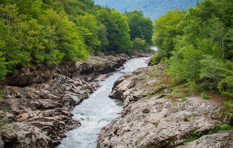 Paisaje del verano con el río de la montaña Río de Belaya en la república de Adygea, Rusia imágenes de archivo libres de regalías