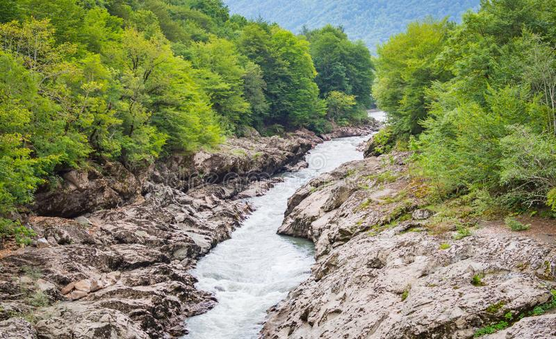 Paisaje del verano con el río de la montaña Río de Belaya en la república de Adygea, Rusia fotos de archivo