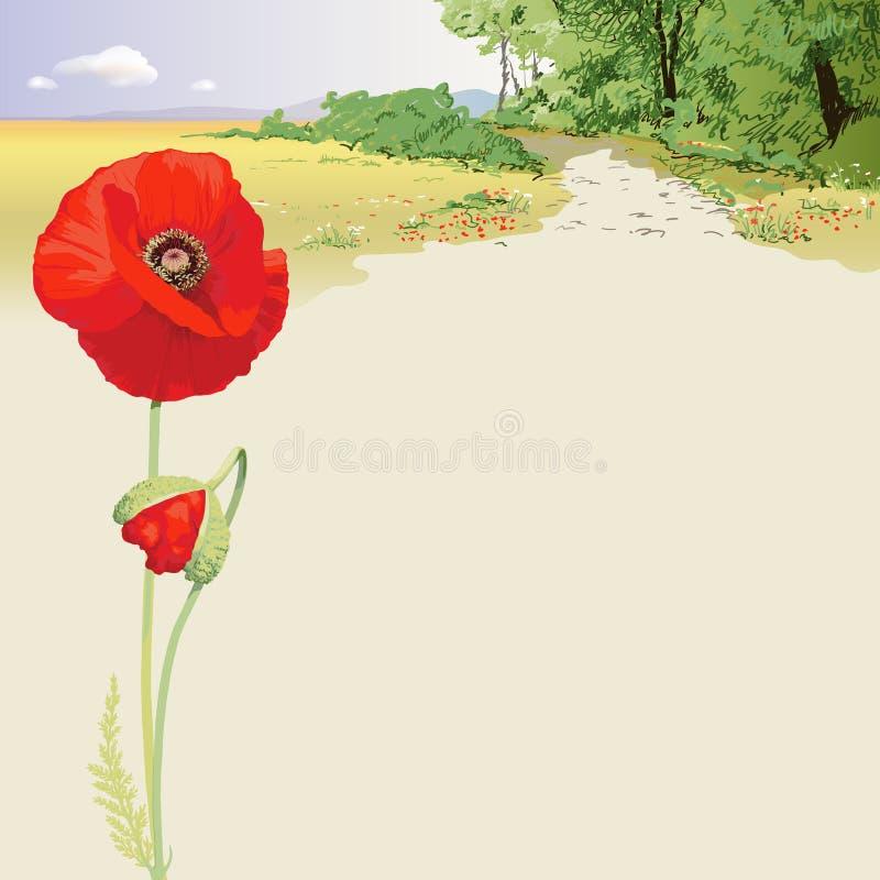 Paisaje del verano con las amapolas rojas ilustración del vector
