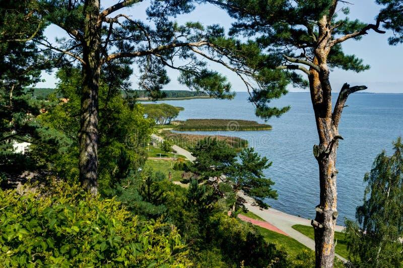 Paisaje del verano con las dunas, los arbustos y el cielo blancos de arena Escupitajo de Curonian, mar Báltico Sitio del patrimon fotografía de archivo