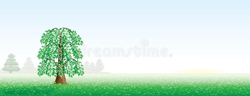 Paisaje del verano con un árbol ilustración del vector