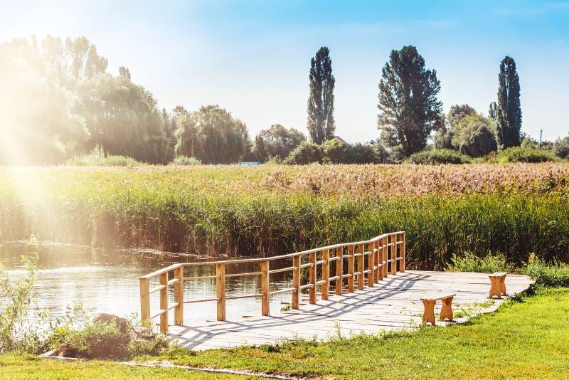 Paisaje del verano con un río, árboles y un puente de madera a través del río Los rayos de la luz del sol iluminan el verano foto de archivo
