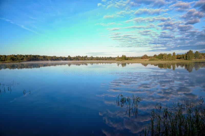 Paisaje del verano en el río fotografía de archivo
