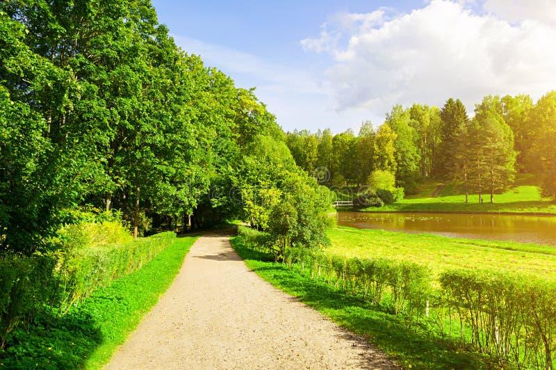 Paisaje del verano en el tiempo soleado - árboles forestales que crecen en el banco del río y de la trayectoria estrecha fotografía de archivo