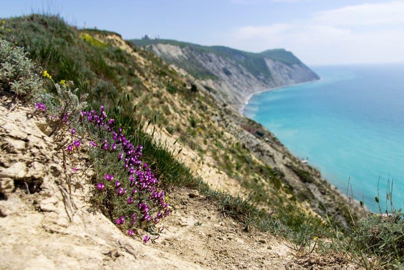 Paisaje del verano en la montaña y el mar Sukko, Anapa, Rusia imagen de archivo libre de regalías