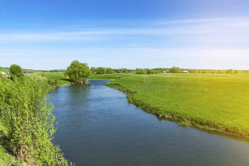 Paisaje del verano en un día asoleado El río fluye entre pequeños árboles y prados florecientes imagen de archivo