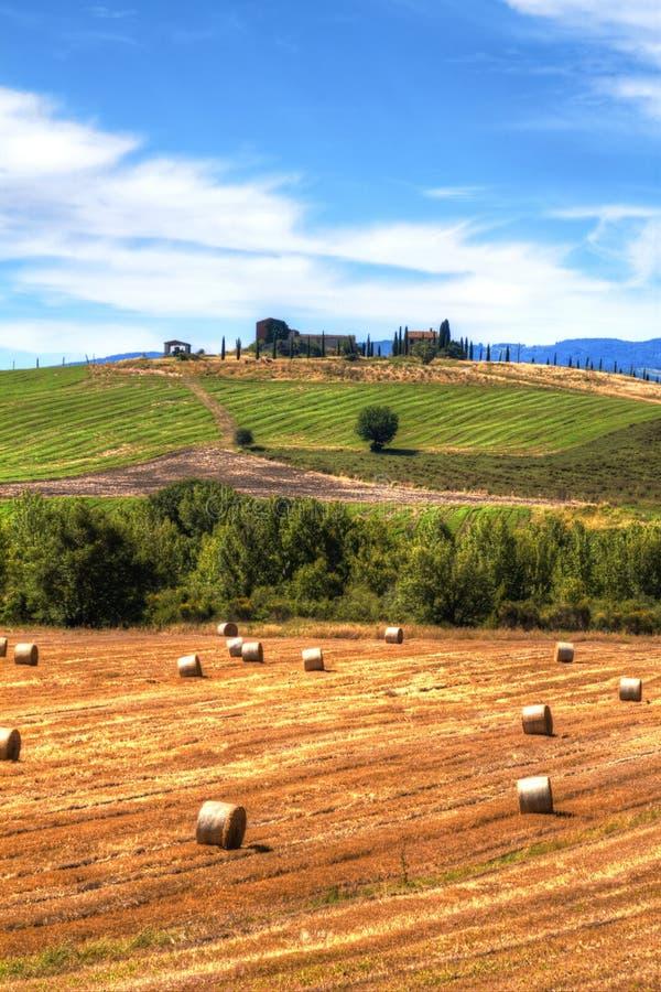 Paisaje del verano en Val d 'Orcia, Toscana fotos de archivo libres de regalías