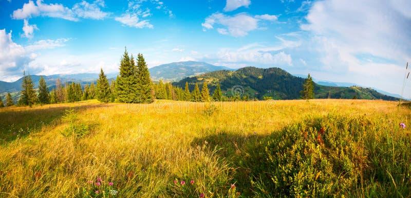 Paisaje del VERANO Panorama del verano imagen de archivo libre de regalías