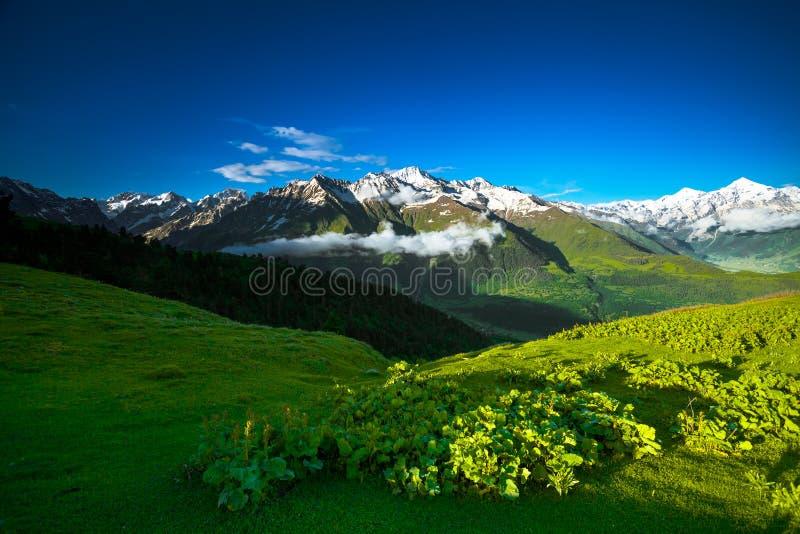 Paisaje del verano del panorama de la montaña georgia fotos de archivo