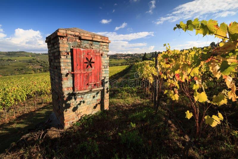 Paisaje del viñedo en otoño con el pozo artesiano típico imagen de archivo