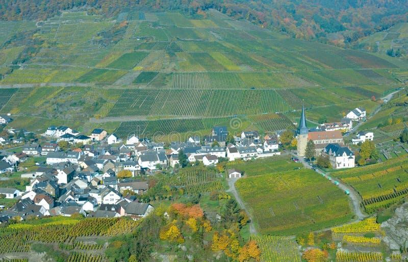 Paisaje del viñedo, valle de Ahr, Renania-Palatinado, Alemania imagenes de archivo