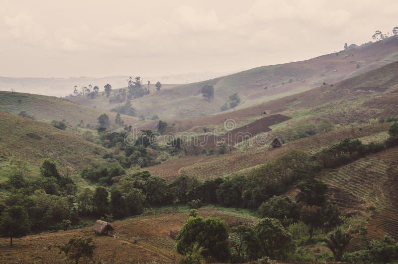 Paisaje dramático de campos y de granjas en las montañas de la región de Ring Road, el Camerún, África imagenes de archivo
