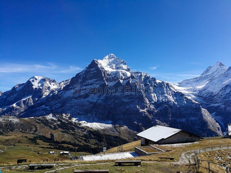 Paisaje en Grindelwald, Suiza fotografía de archivo libre de regalías