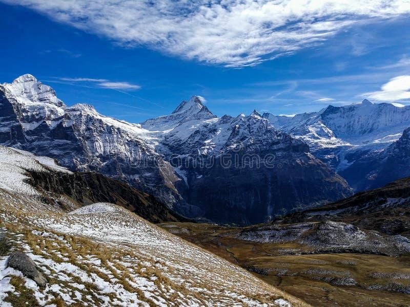Paisaje en Grindelwald, Suiza imagen de archivo