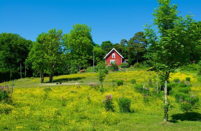 Paisaje en la costa oeste, Suecia del verano imagenes de archivo