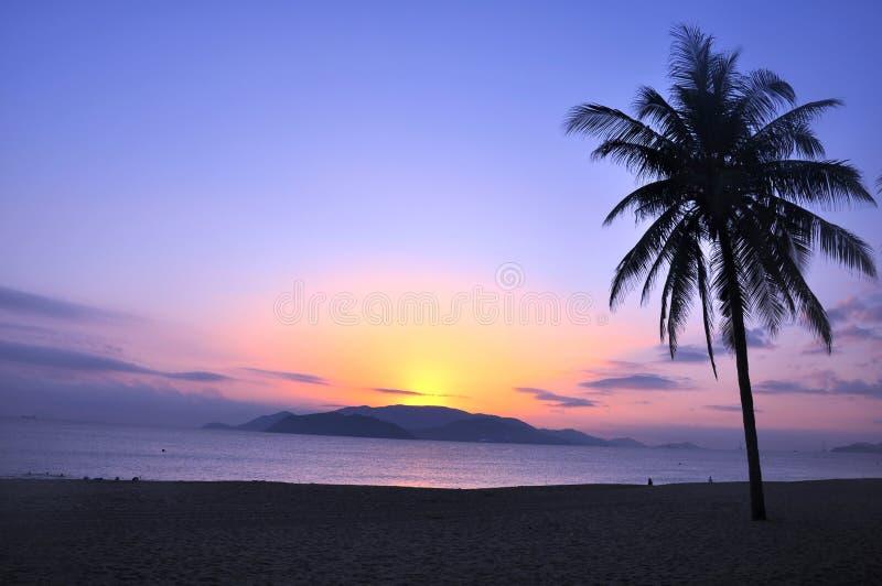 Paisaje en la playa foto de archivo libre de regalías