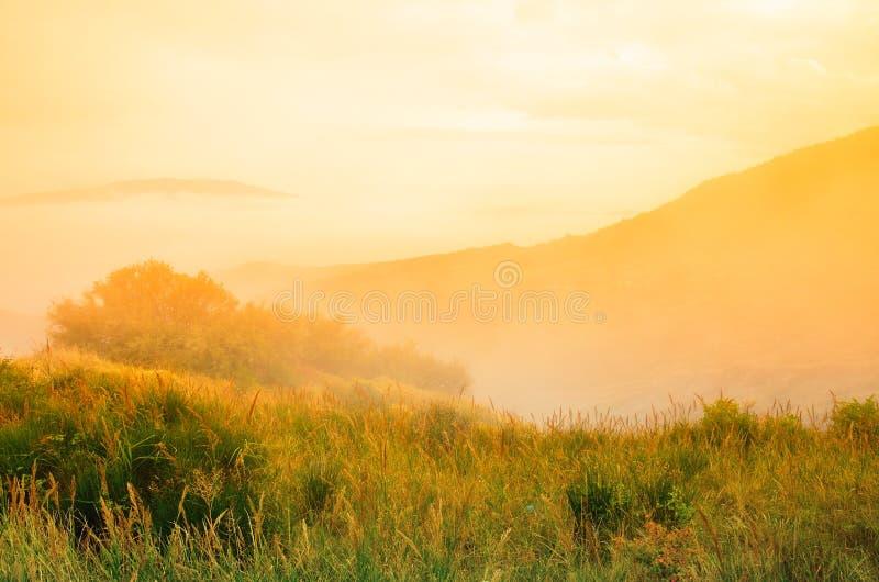 Paisaje en la puesta del sol imágenes de archivo libres de regalías