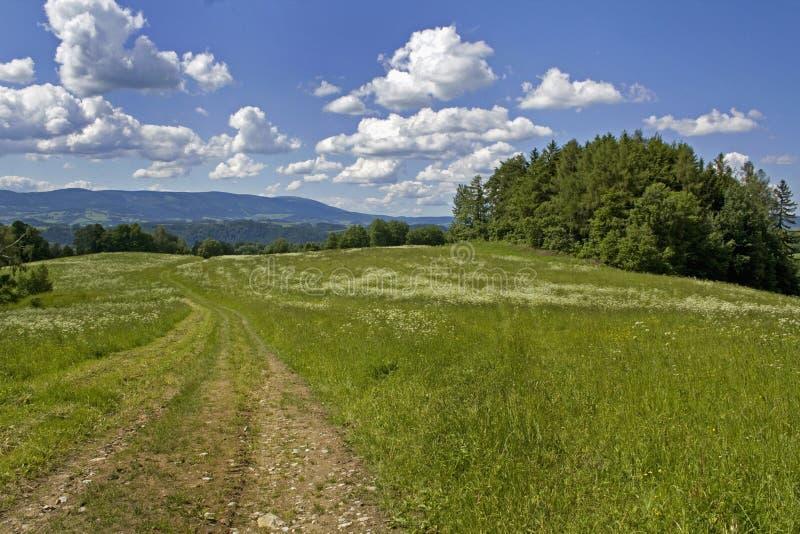 Paisaje en las montañas fotografía de archivo libre de regalías
