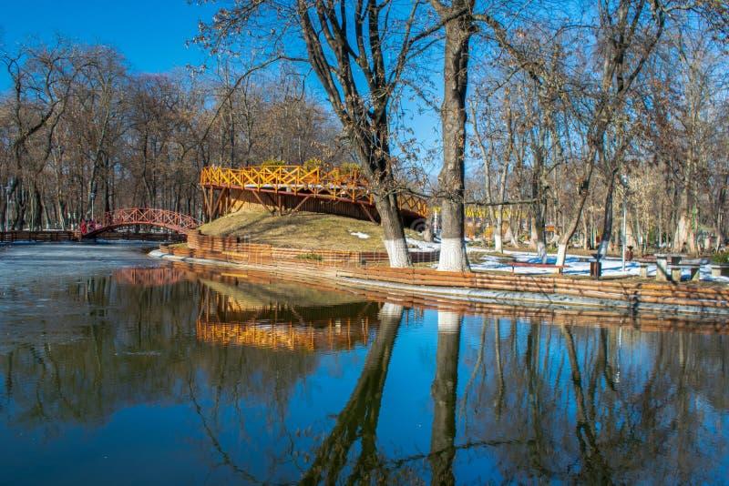 Paisaje en Roman Park, Neamt, Rumania del invierno foto de archivo libre de regalías