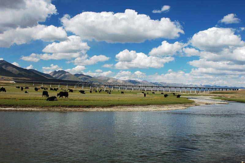Paisaje en Tíbet fotografía de archivo
