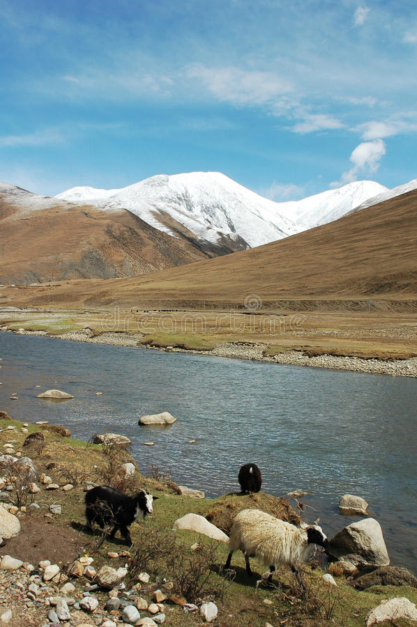 Paisaje en Tíbet imagenes de archivo