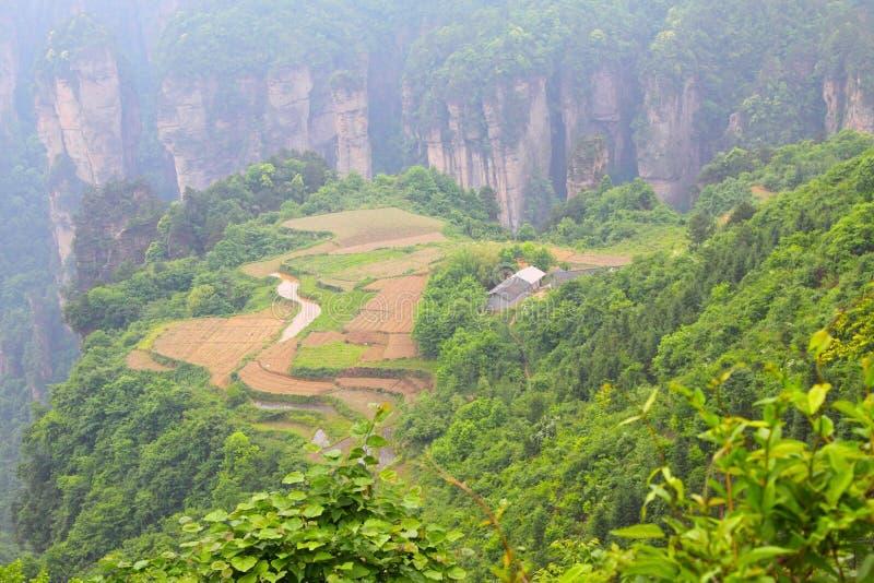 Paisaje en Zhangjiajie de China imágenes de archivo libres de regalías