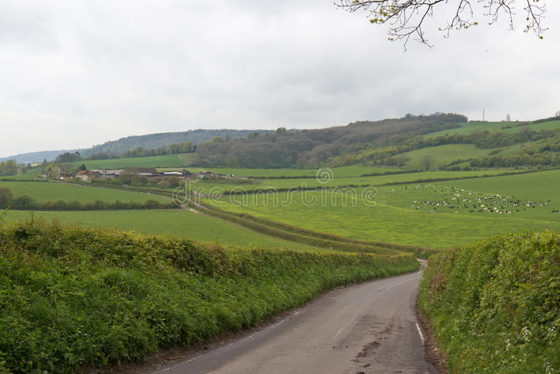 Paisaje enorme de las tierras de labrantío en Surrey, Inglaterra imágenes de archivo libres de regalías