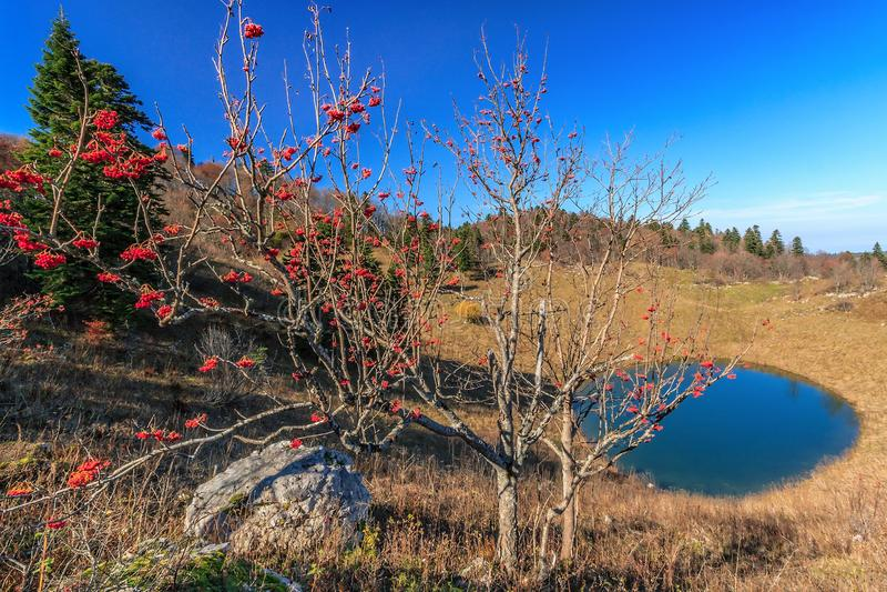 Paisaje escénico del cielo azul del día soleado del otoño del lago de la montaña de Cheshe y del árbol de la bola de nieve en la  imagen de archivo libre de regalías