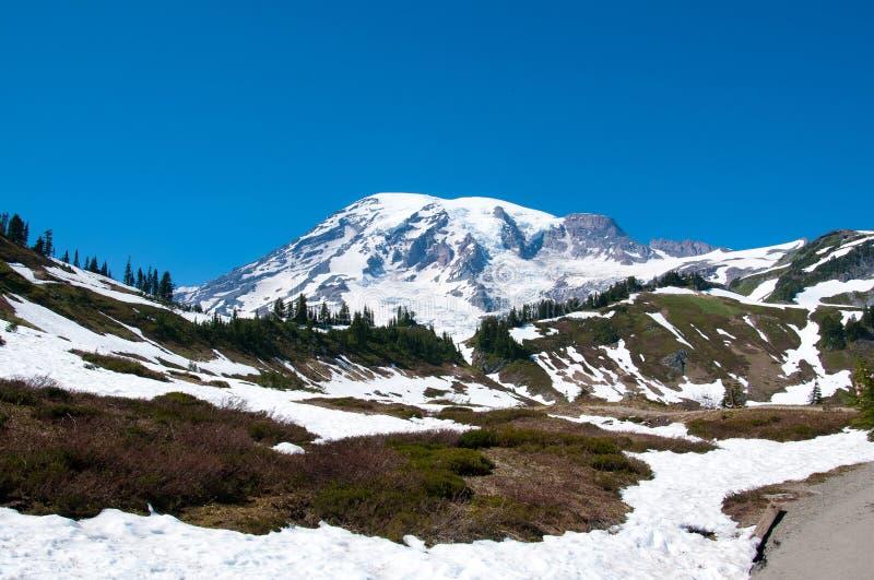 Paisaje escénico del Monte Rainier imagenes de archivo
