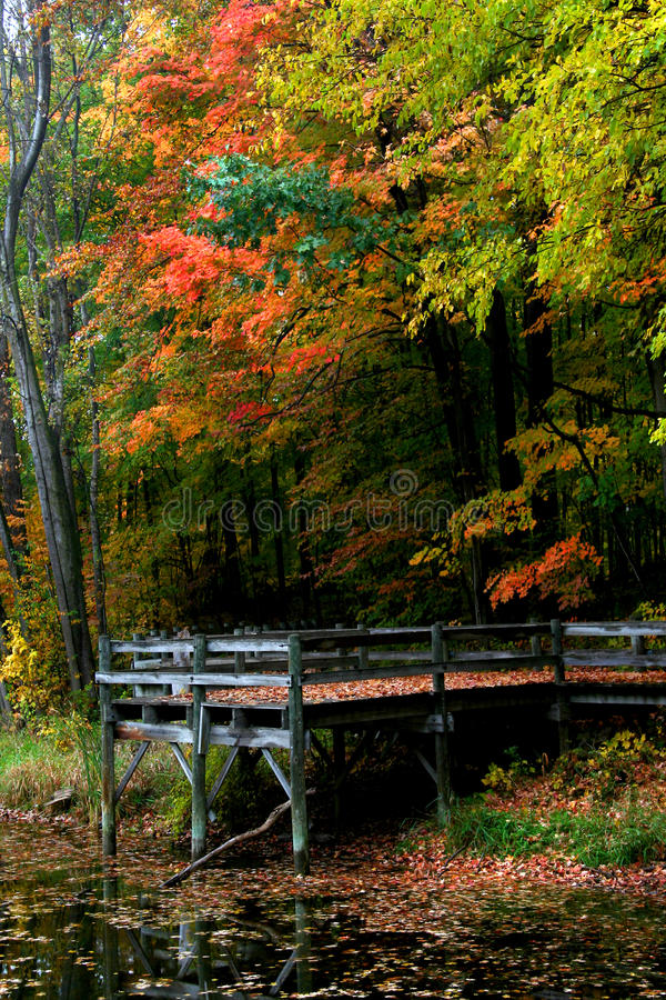 Paisaje escénico del otoño en Pennsylvania foto de archivo libre de regalías