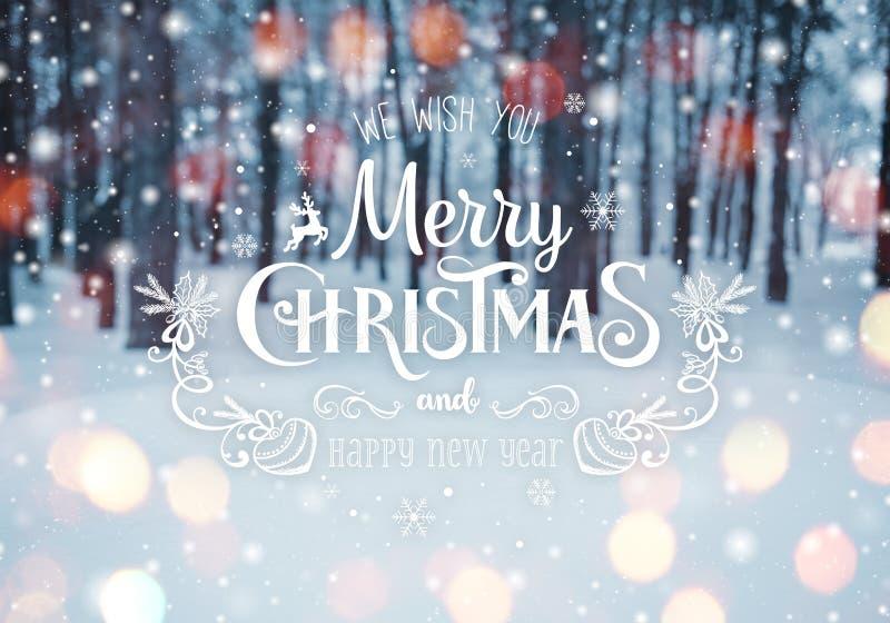 Paisaje escarchado del invierno en fondo nevoso de la Navidad del bosque con los abetos y el fondo borroso del invierno con el te foto de archivo libre de regalías