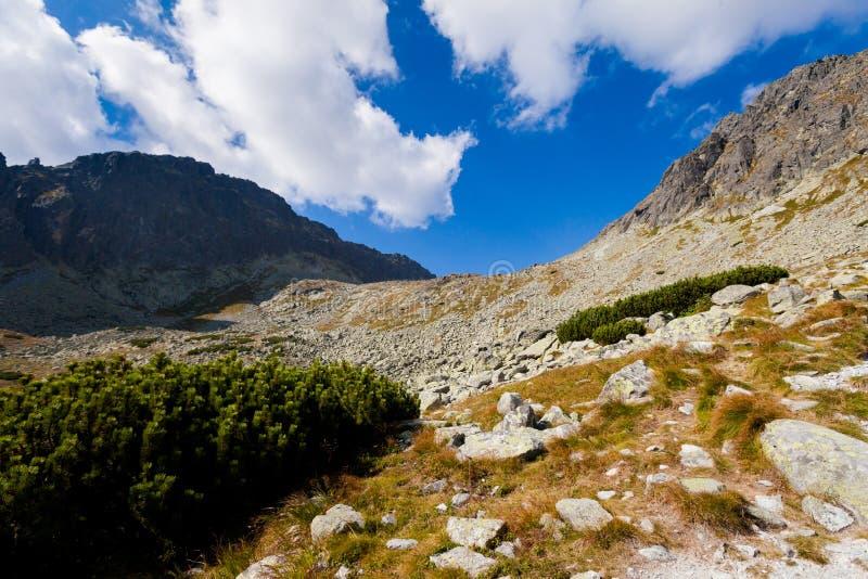 Paisaje eslovaco de Tatra del dolina de Furkotska fotografía de archivo libre de regalías